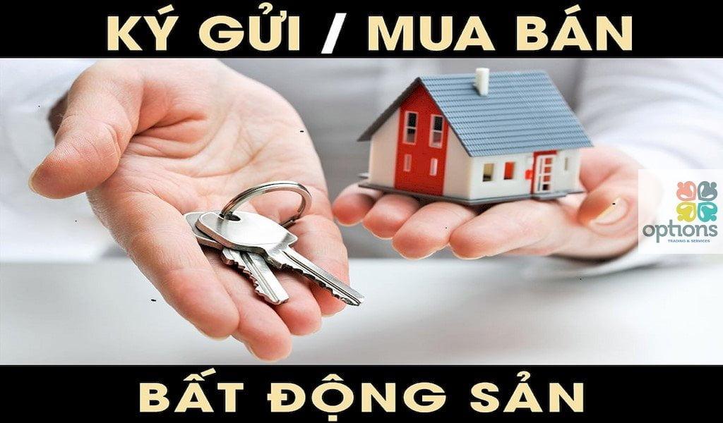 Cần mua nhà đất tại Xã Long Nguyên